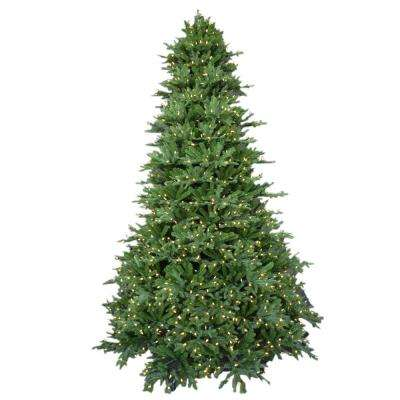 9 ft. Pre-Lit LED Royal Fraser Fir Artificial Christmas Tree with Warm White Lights