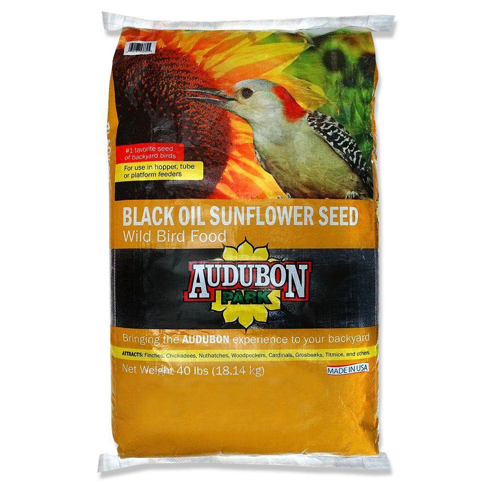 audubon park 40 lb sunflower seed 12173 the home depot