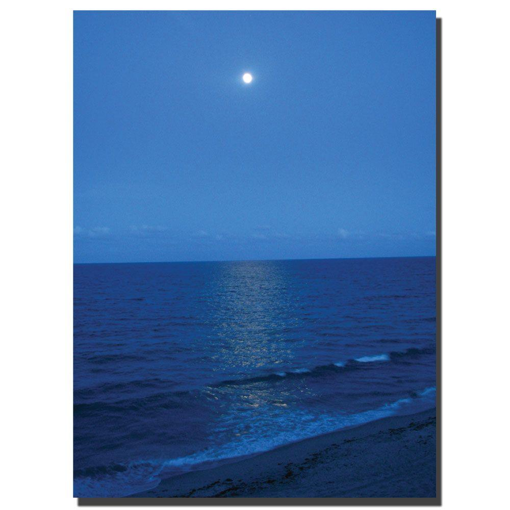 Trademark Fine Art 18 in. x 24 in. Blue Waves II Canvas Art-DISCONTINUED