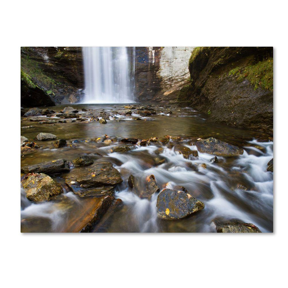 null 22 in. x 32 in. Looking Glass Falls Canvas Art