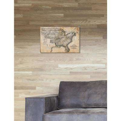 """""""The Eagle Map of the US 1833"""" by Oliver Gal Canvas Wall Art"""