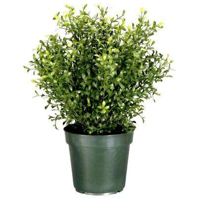 Outdoor Topiary Trees With Lights Artificial foliage topiaries outdoor decor the home depot 30 in argentea artificial plant in round green growers pot workwithnaturefo