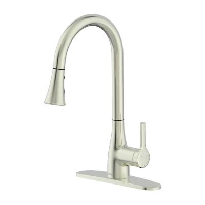 Classic Series Single-Handle Standard Kitchen Faucet in Brushed Nickel