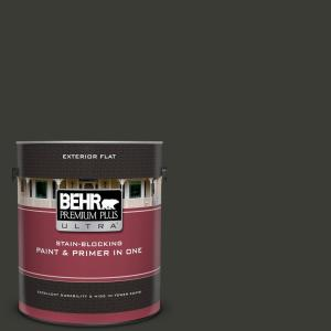 1 gal. #ECC-10-2 Jet Black Flat Exterior Paint and Primer in One