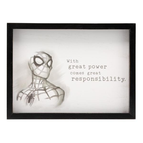 12 In X 16 In Spider Man With Great Power Wood Framed Wall Art
