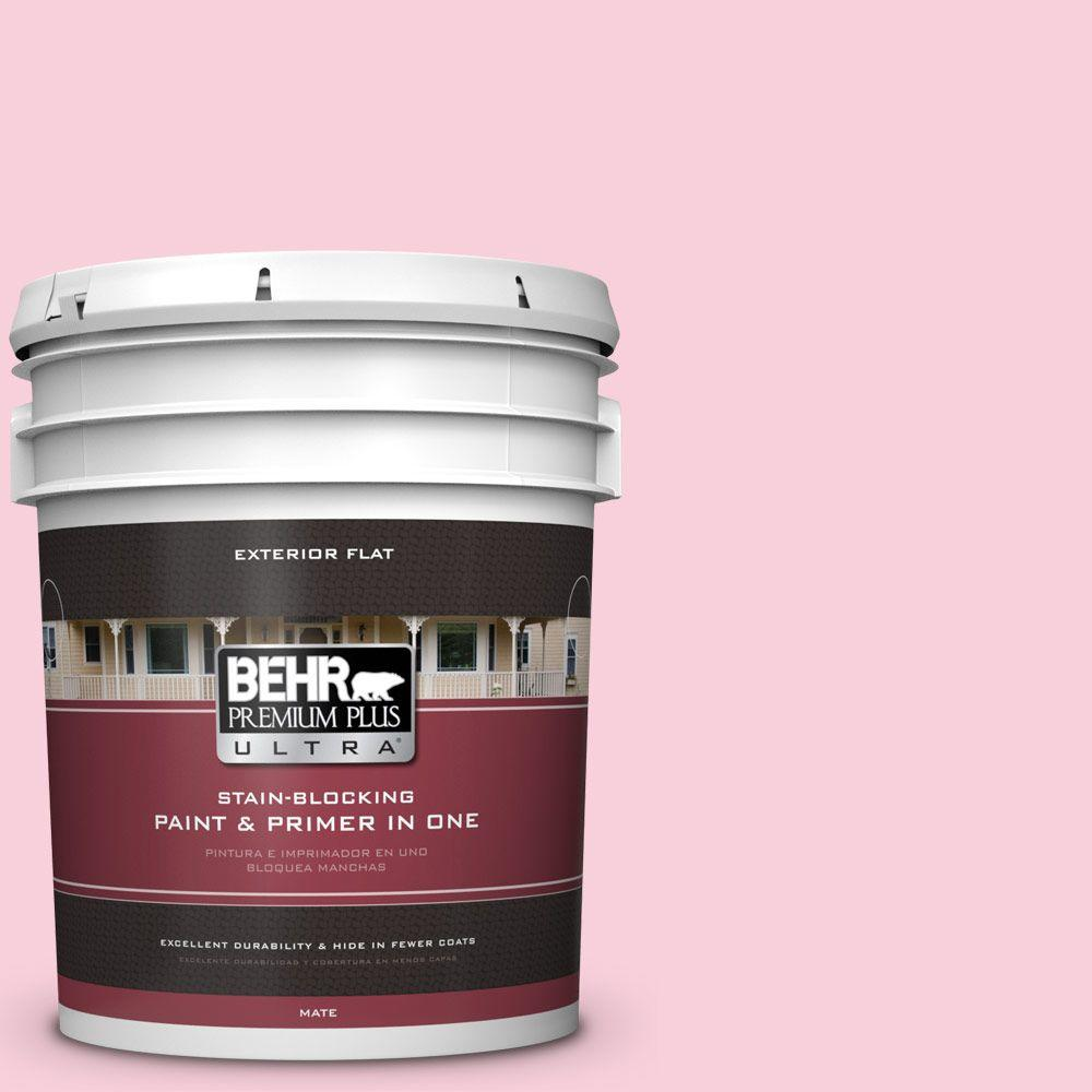 5-gal. #120C-1 April Blush Flat Exterior Paint