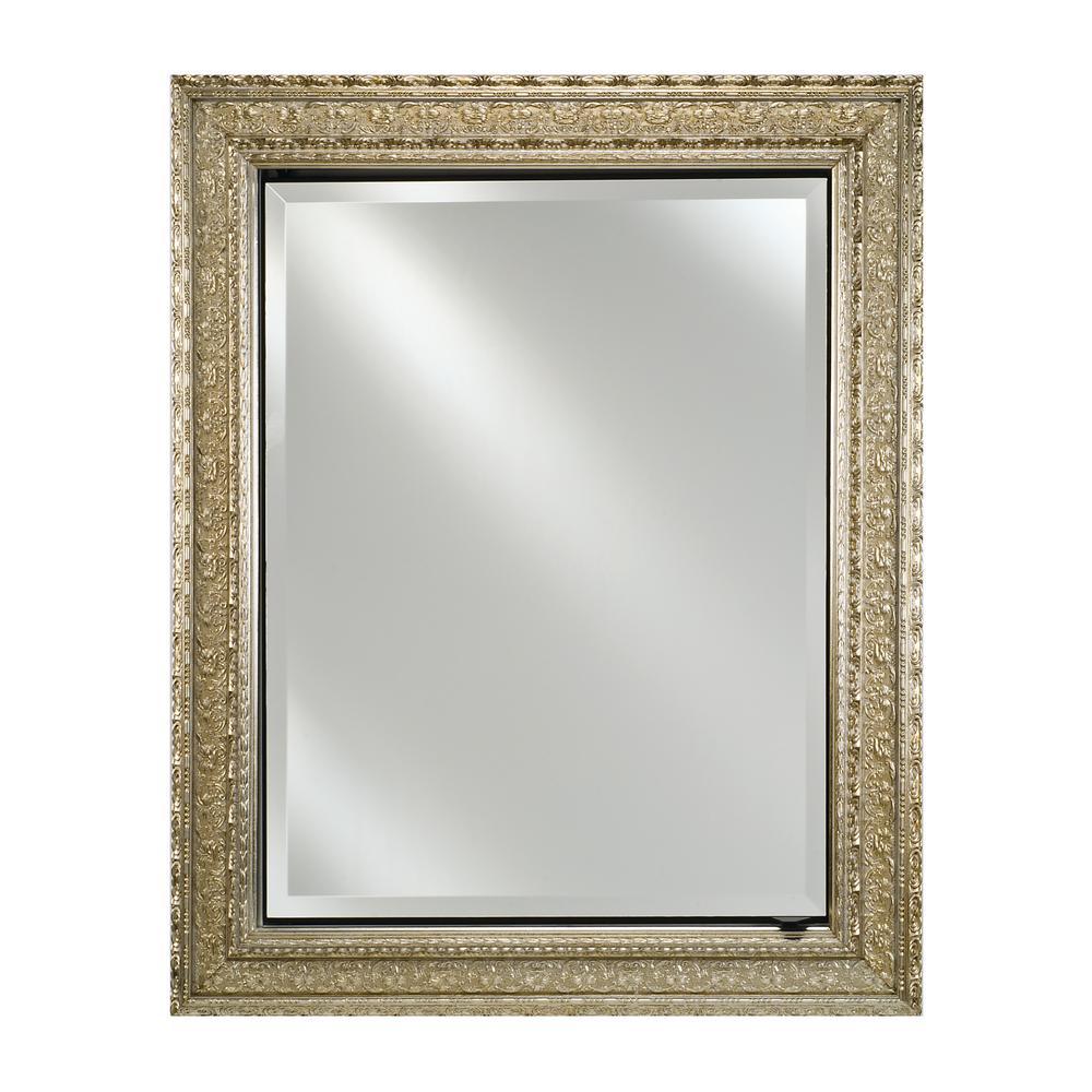 X 30 In Regal Silver Framed