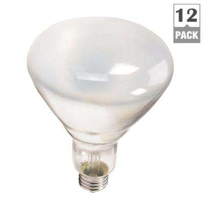 65-Watt Incandescent BR40 Flood Light Bulb (12-Pack)