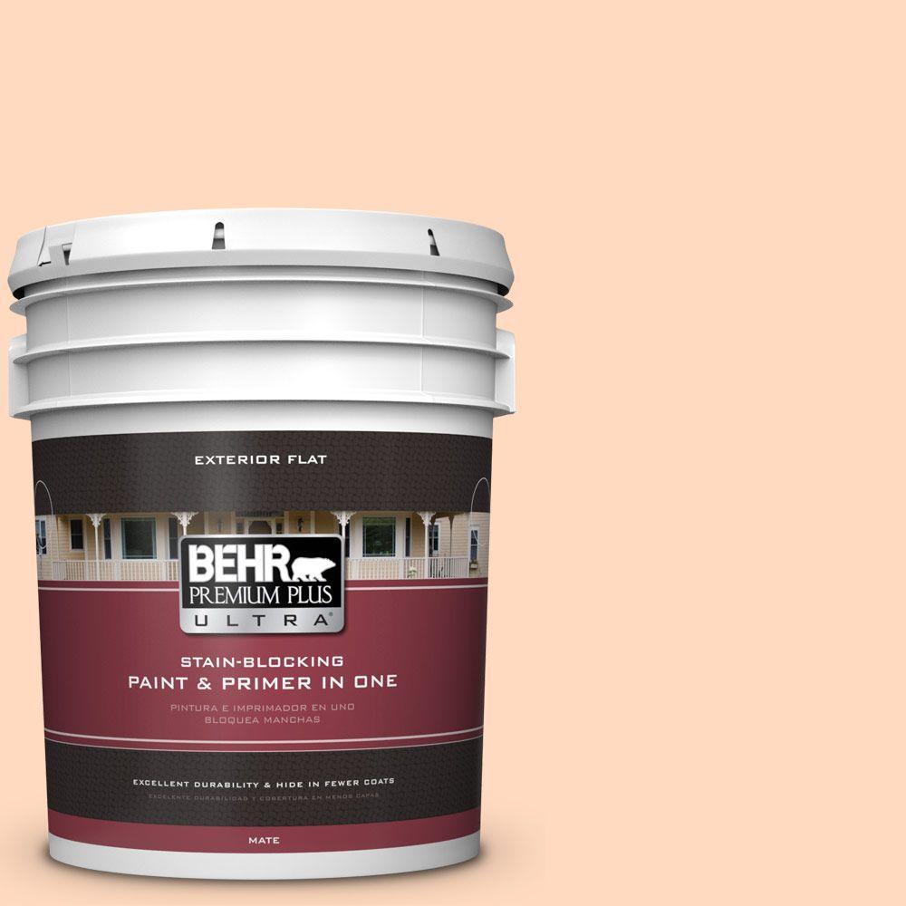 BEHR Premium Plus Ultra 5-gal. #P210-2 Citrus Delight Flat Exterior Paint