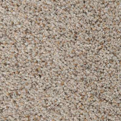 Carpet Sample - Riley I - Color Salem Textured 8 in. x 8 in.