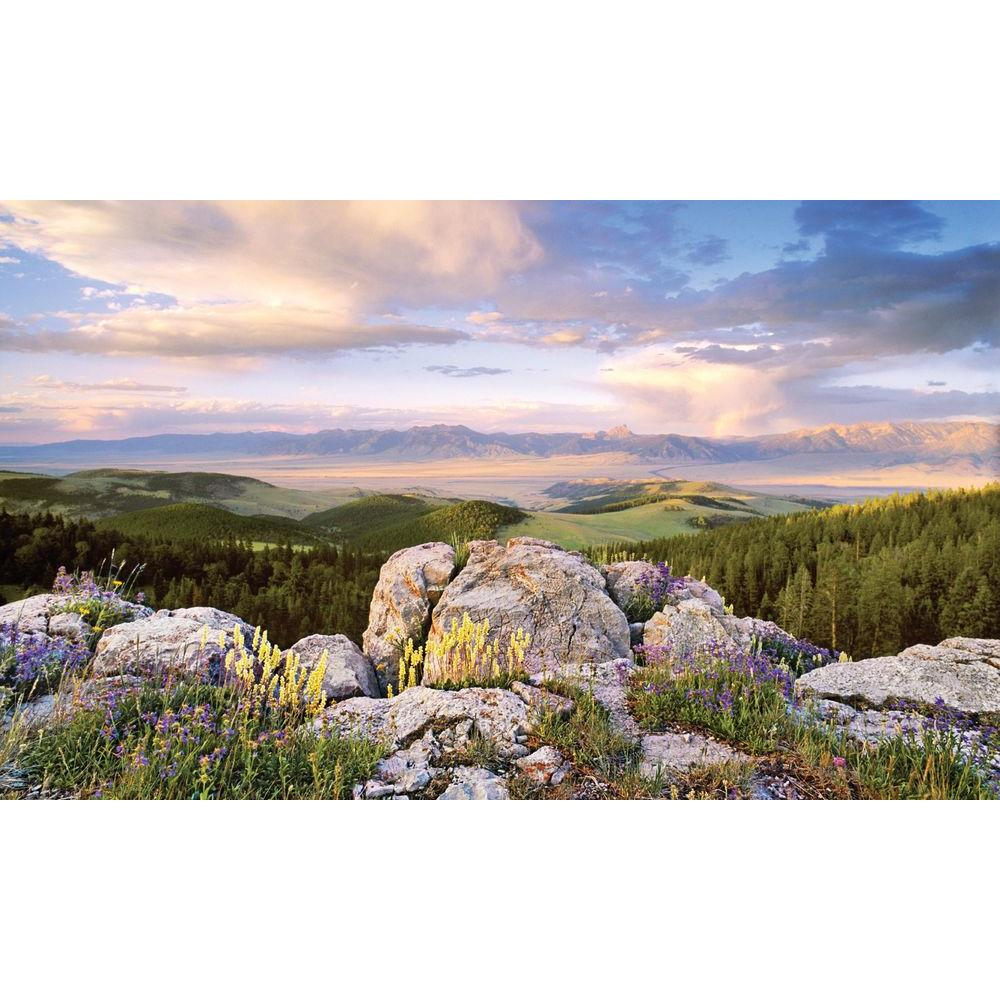100 in. x 60 in. Window Well Scene - Sunrise
