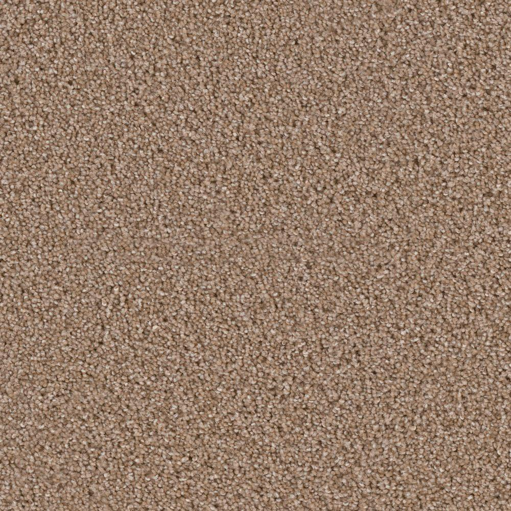 Carpet Sample - Kalamazoo II - Color Sumter Texture 8 in.
