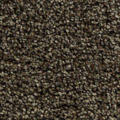Carpet Sample - Greenlee II - In Color Grizzly Bear 8 in. x 8 in.
