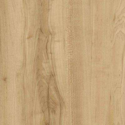 Verge 6 in. x 48 in. Acacia Glue Down Vinyl Plank Flooring (36 sq. ft. / case)
