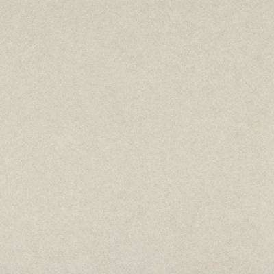 5 ft. x 12 ft. Laminate Sheet in Beige Pampas with Standard Matte Finish