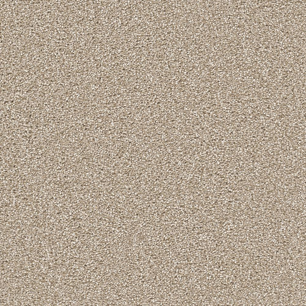 Home Decorators Collection Perfected II - Color Ideal Texture 12 ft. Carpet