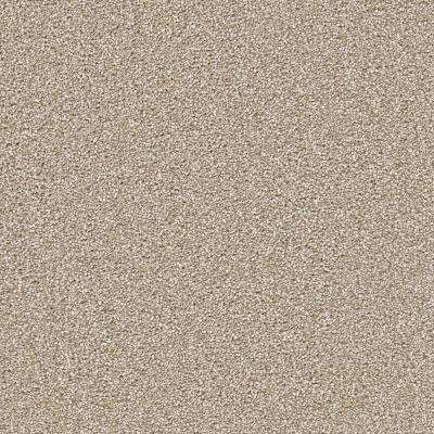 Perfected II - Color Ideal Texture 12 ft. Carpet