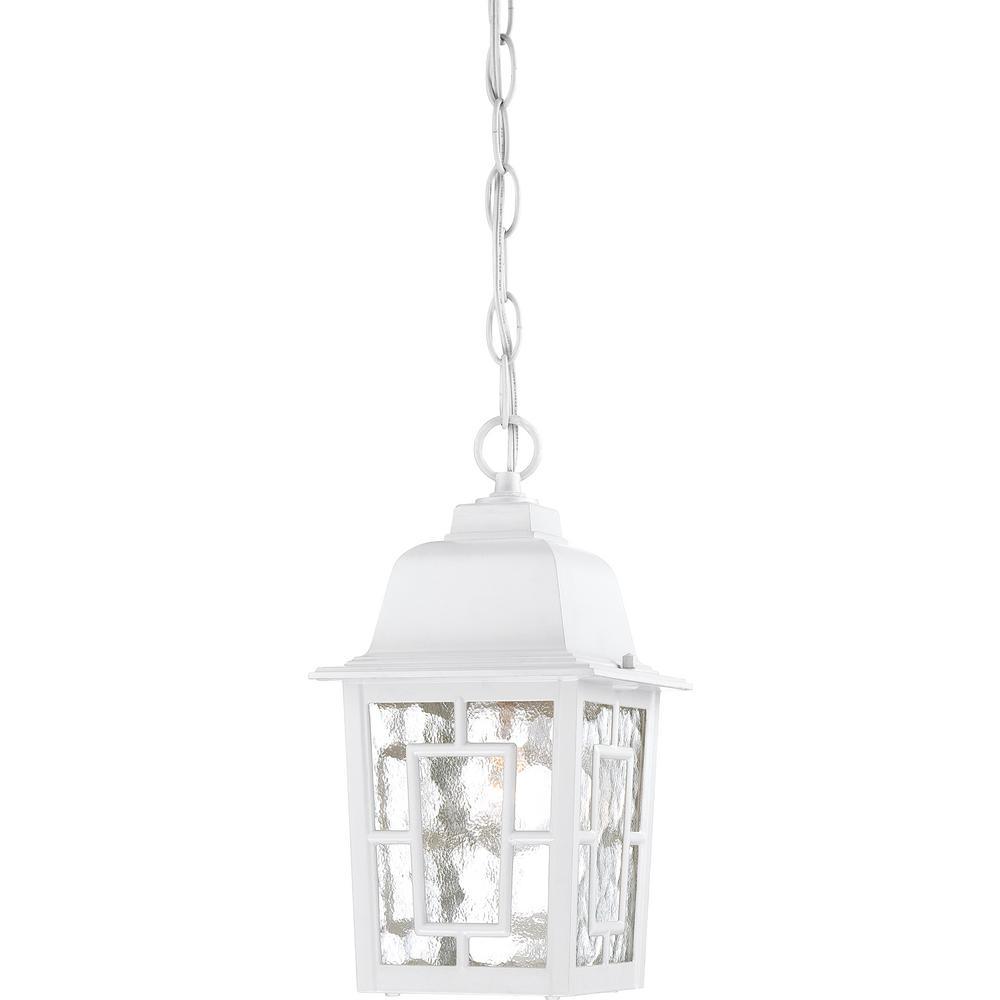 Steve White 1-Light Outdoor Hanging Lantern