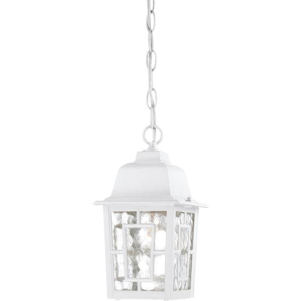 Steve White 1-Light Outdoor Hanging Lantern