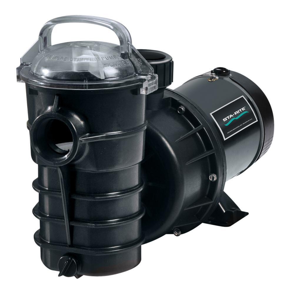 Dynamo 1-1/2 HP Dual Speed Pool Pump