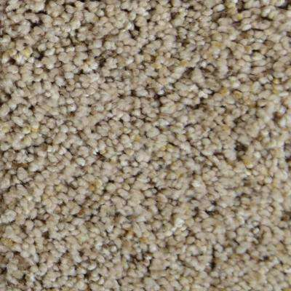 Carpet Sample - Madison II - Color Glencove Texture 8 in. x 8 in.