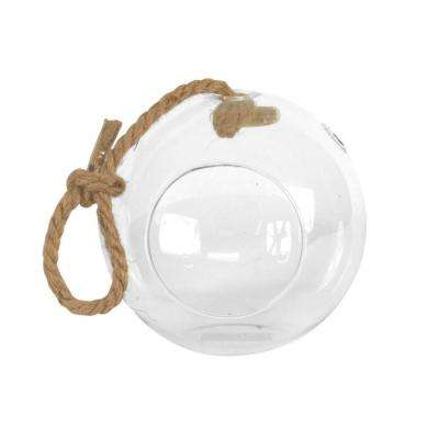 Sphere 7 in. x 7 in. Glass Hanging Terrarium