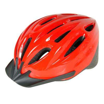 1500 ATB Adult Bicycle Helmet