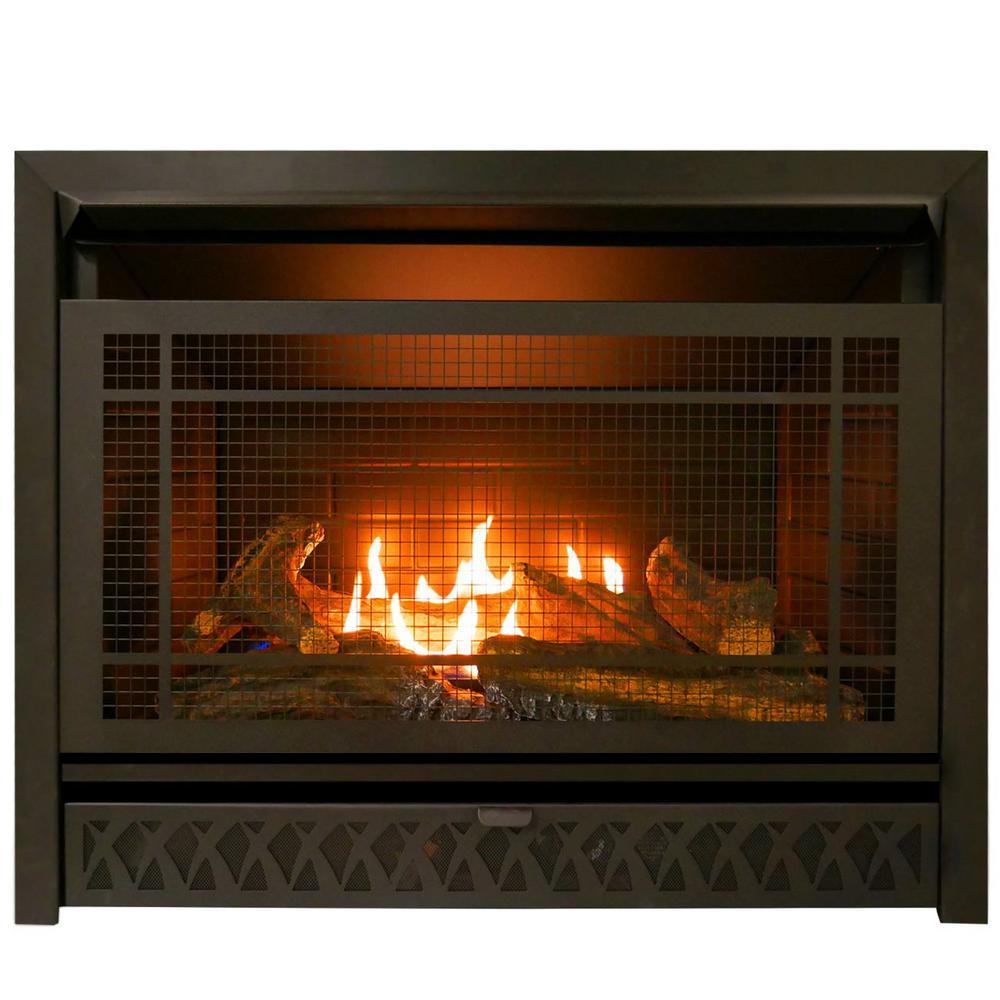 Procom Gas Fireplace Insert Duel Fuel Technology 26 000