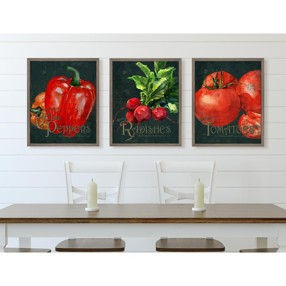 """20 in. x 24 in. """"Seed Packet-Tomatoes"""" Framed Giclee Print Wall"""
