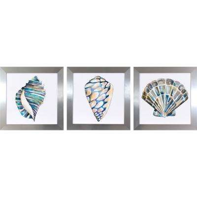 19.5 in. x 19.5 in. Aquarelle Shells Printed Framed Wall Art (Set of 3)