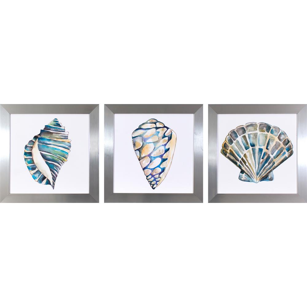 19.5 in. x 19.5 in. Aquarelle Shells Printed Framed Wall Art