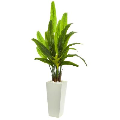 Indoor 69-In. Travelers Palm Artificial Tree in White Tower Planter