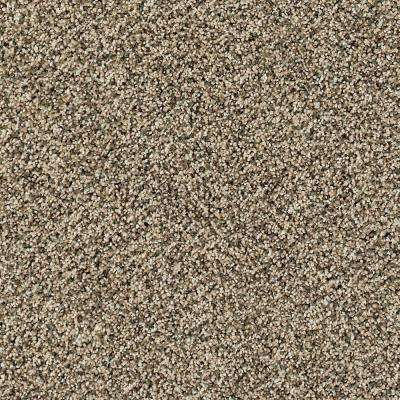 Carpet Sample - Briarmoor I - Color Heirloom Texture 8 in. x 8 in.