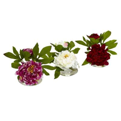 Indoor 6in. H Assorted Peony with Glass Vase (Set of 3)