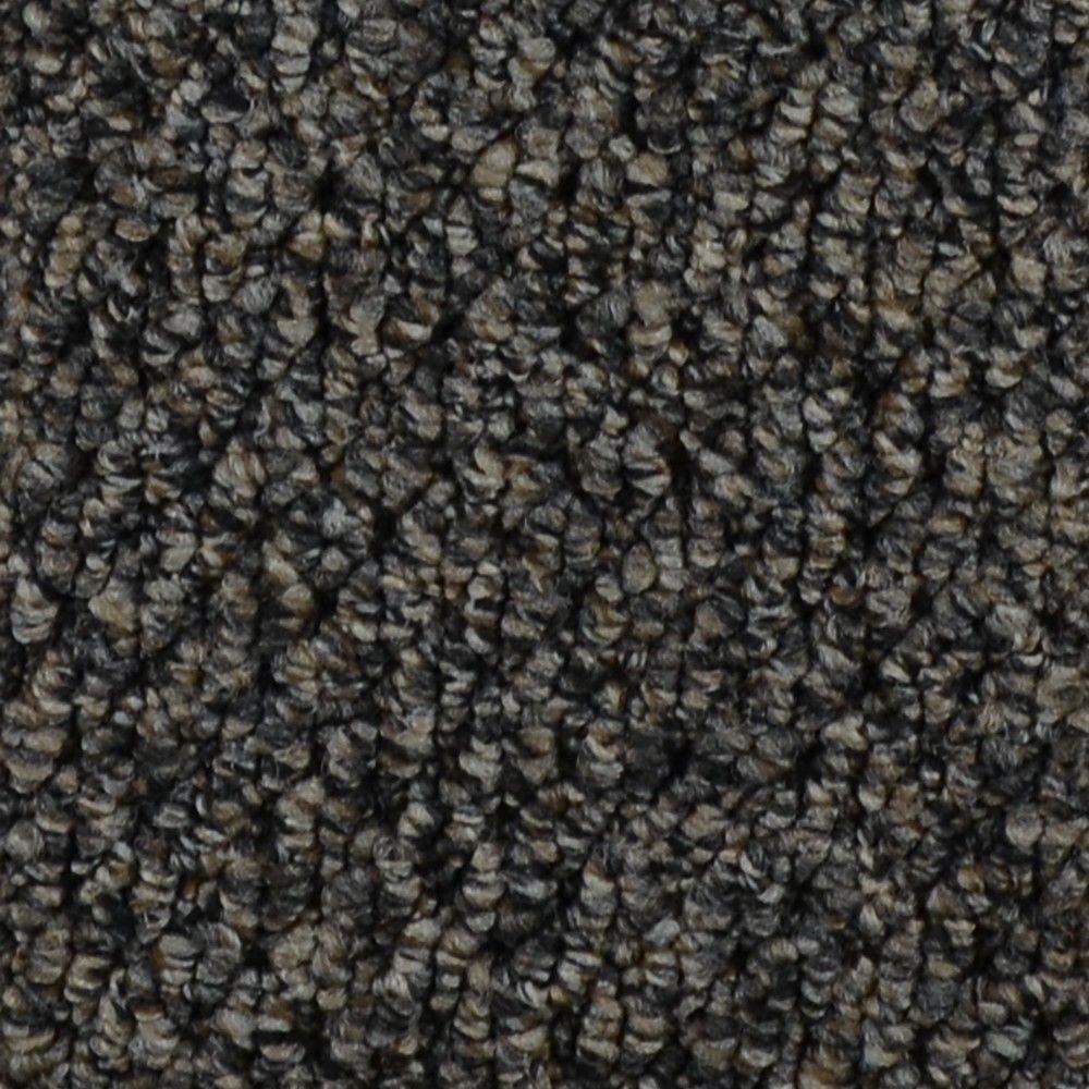 Follow Up - Color Odessa Loop 12 ft. Carpet