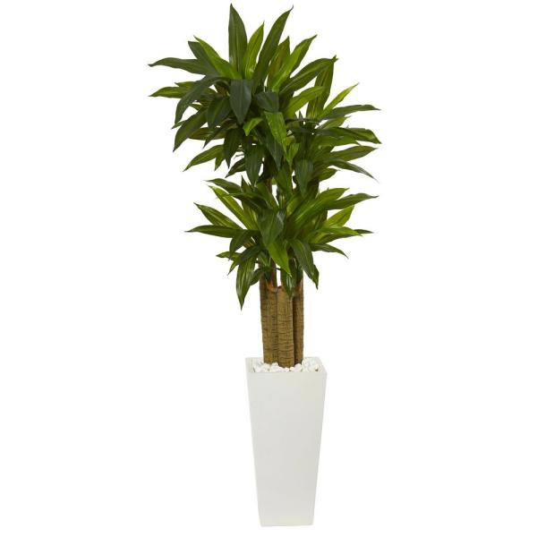 Nearly Natural 5 ft. Cornstalk Dracaena Artificial Plant in White Tower