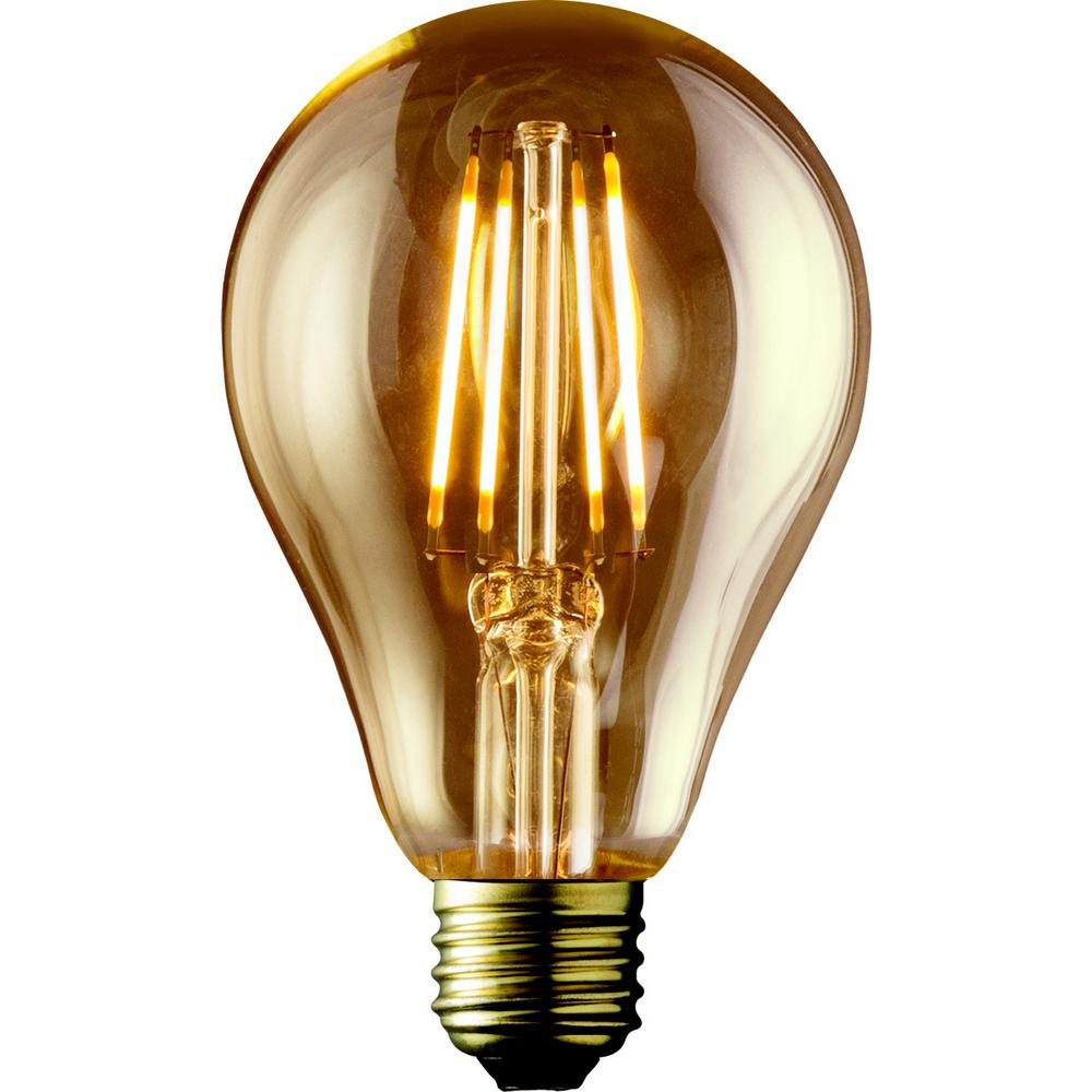 Archipelago 40w Equivalent Warm White A19 Amber Lens Vintage Victorian Dimmable Led Light Bulb