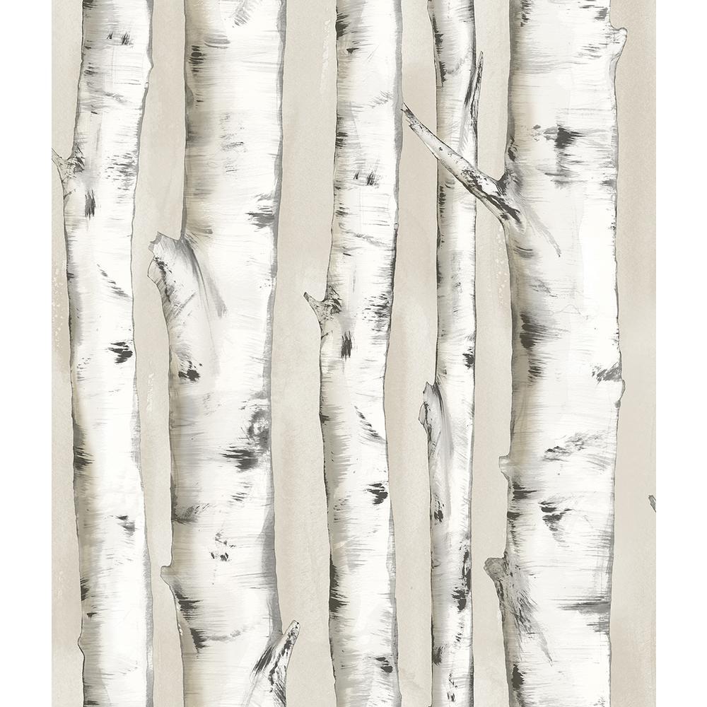 56.4 sq. ft. Pioneer Off-White Birch Tree Wallpaper