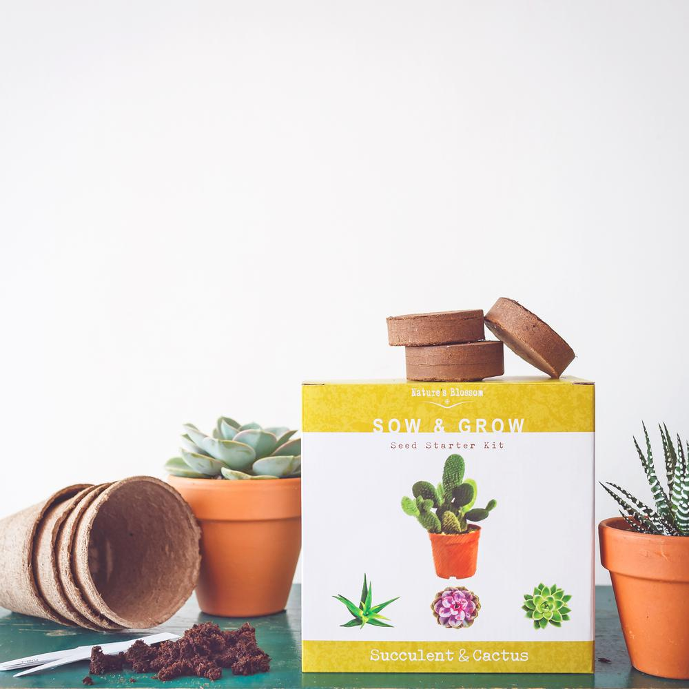 Nature S Blossom Complete Set With Seeds Planting Pots Organic Soil And Guide Succulent Cactus Growing Kit
