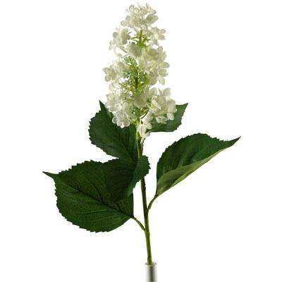 Indoor Cream Tree Hydrangea (Set of 3)
