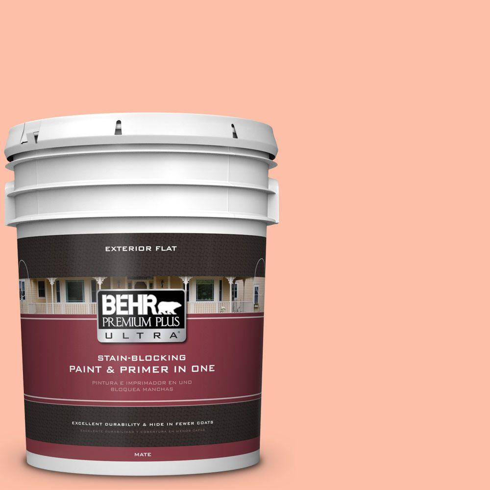 5-gal. #220A-3 Sweet Apricot Flat Exterior Paint