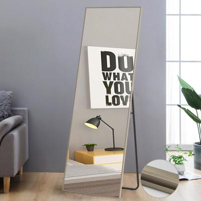 NeuType Matte Champagne Aluminum Alloy Thin Frame Full Length Floor Mirror Standing Hanging or Leaning Against Wall