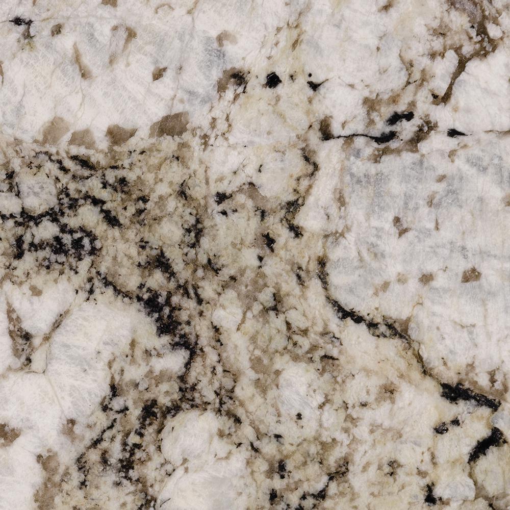 3 in. x 3 in. Granite Countertop Sample in Pearl