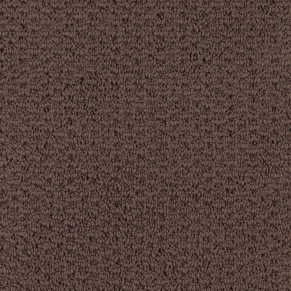 Lifeproof Morningside Color Cat Tail 12 Ft Carpet 0566d