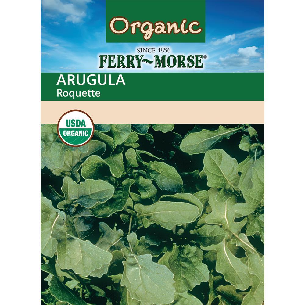 Arugula Roquette Organic Seed