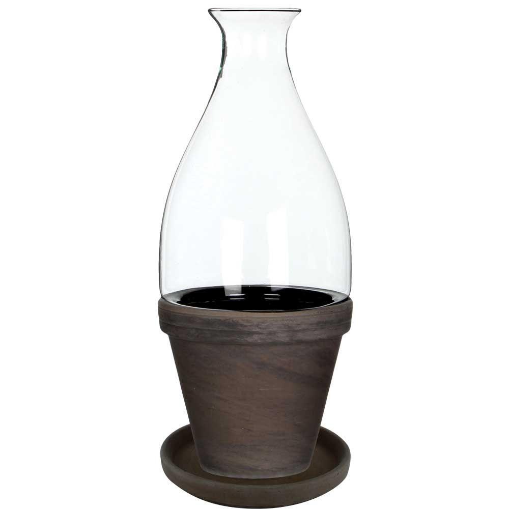 Vidro 5 in. Dia x 12 in. H Glass Terrarium with Brown Basalt Ceramic Pot and Saucer in Color Box