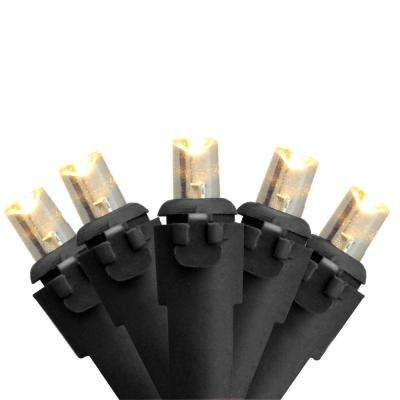 Set of 50 Warm White LED Wide Angle Christmas Lights - Black Wire