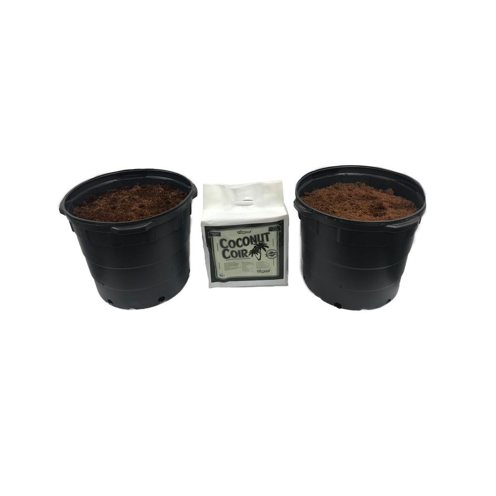 10 Gal. 37.85 l Plastic Nursery Trade Pots with Coconut Coir