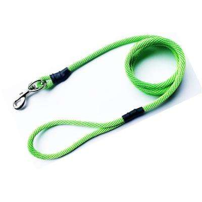 Neon Green No Pull Leash for Medium and Large Dogs