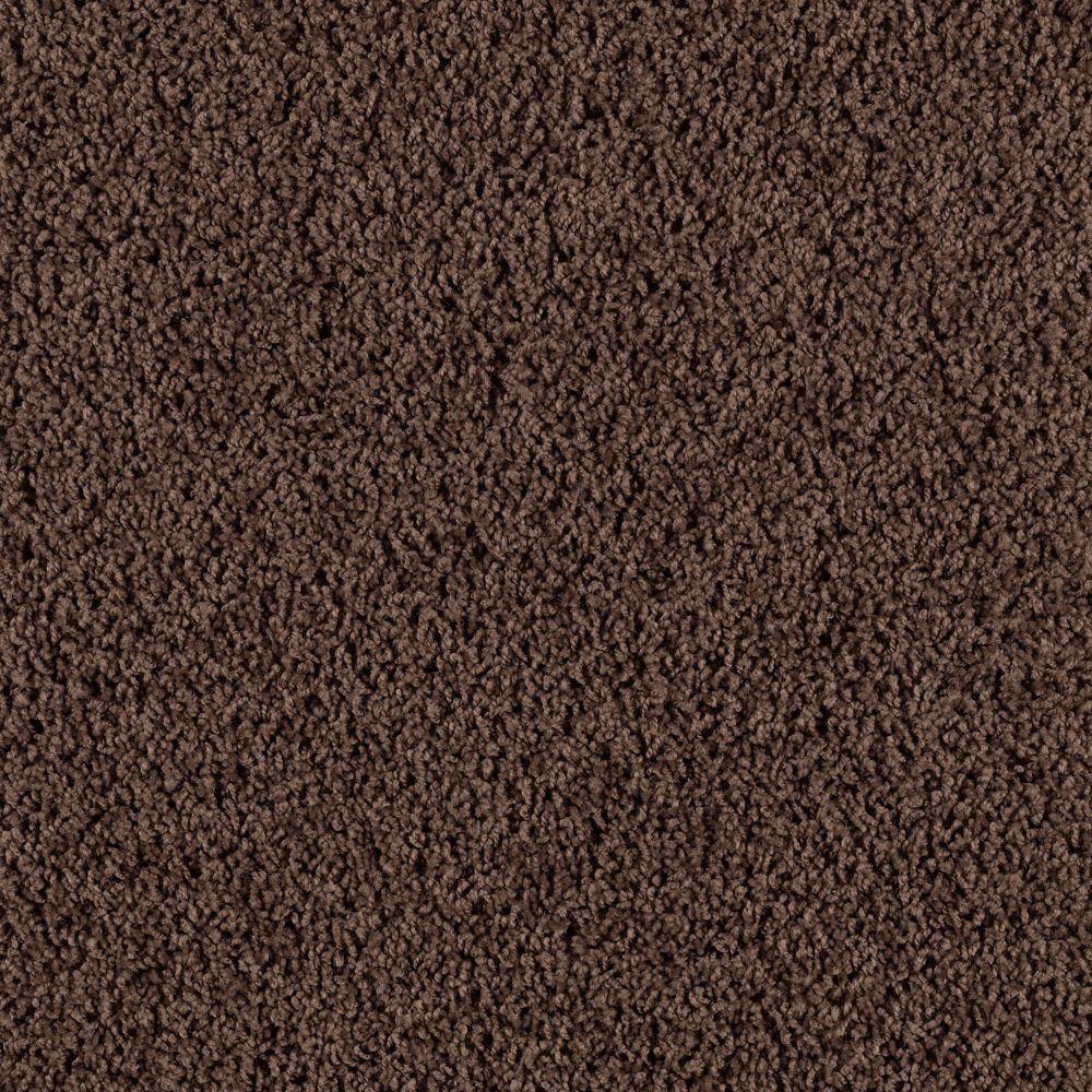 Bassano I - Color Rich Earth 12 ft. Carpet